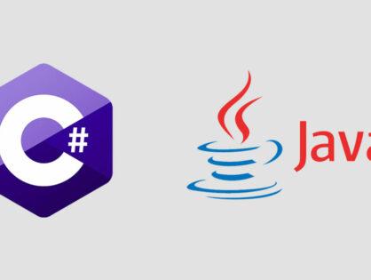 Chef de projet: Java / C#